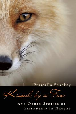 Kissed by a Fox By Stuckey, Priscilla